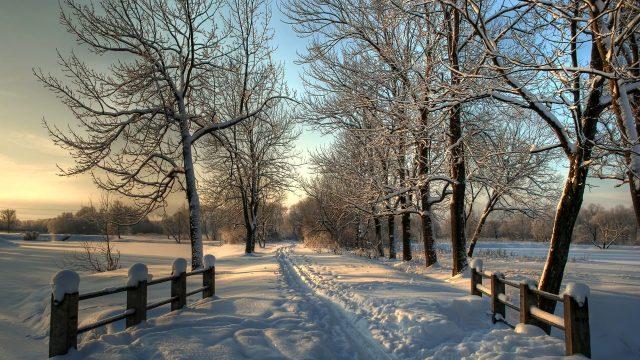 Как пережить холода?