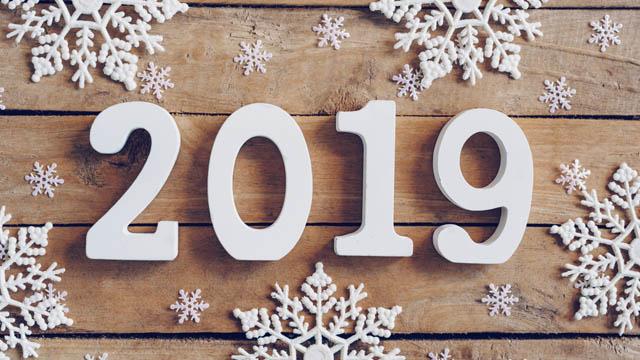 Новый 2019 год