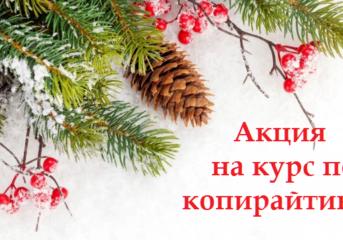Новогодняя скидка 3000 рублей на курс по текстам